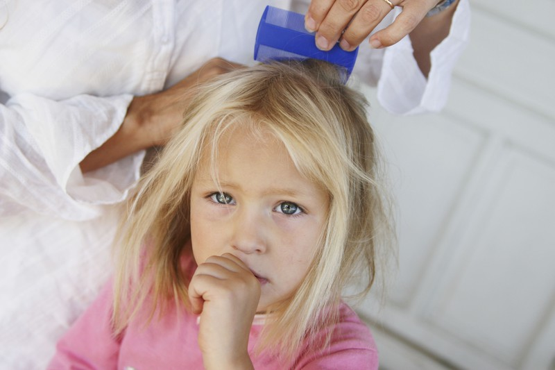 педикулез фото у детей лечение в домашних условиях