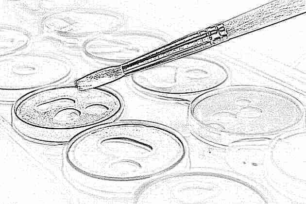 kraski-dlya-risovaniya-vidy-i-harakteristiki Краски для рисования (41 фото): какие бывают виды, выбираем на воде и масле, а также наборы, краски для рисования мелом на ткани, стенах и стекле