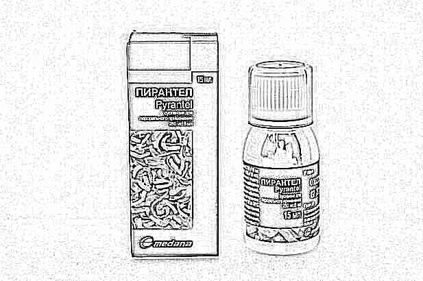 Пирантел для детей: инструкция по применению и дозировка, как принимать для профилактики, отзывы о детском средстве