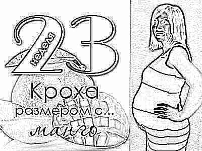 Беременность 23 нед секс удобные позы