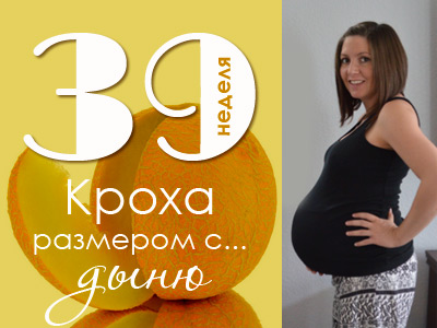 Позы в сексе во время беременность 25 недель с рисунками
