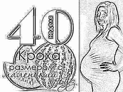 Нет предвестников родов на 40 неделе
