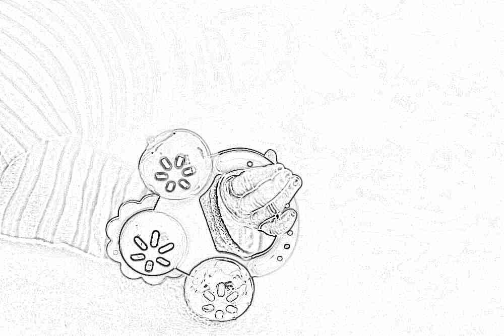 Погремушки первые и самые главные игрушки для новорожднных