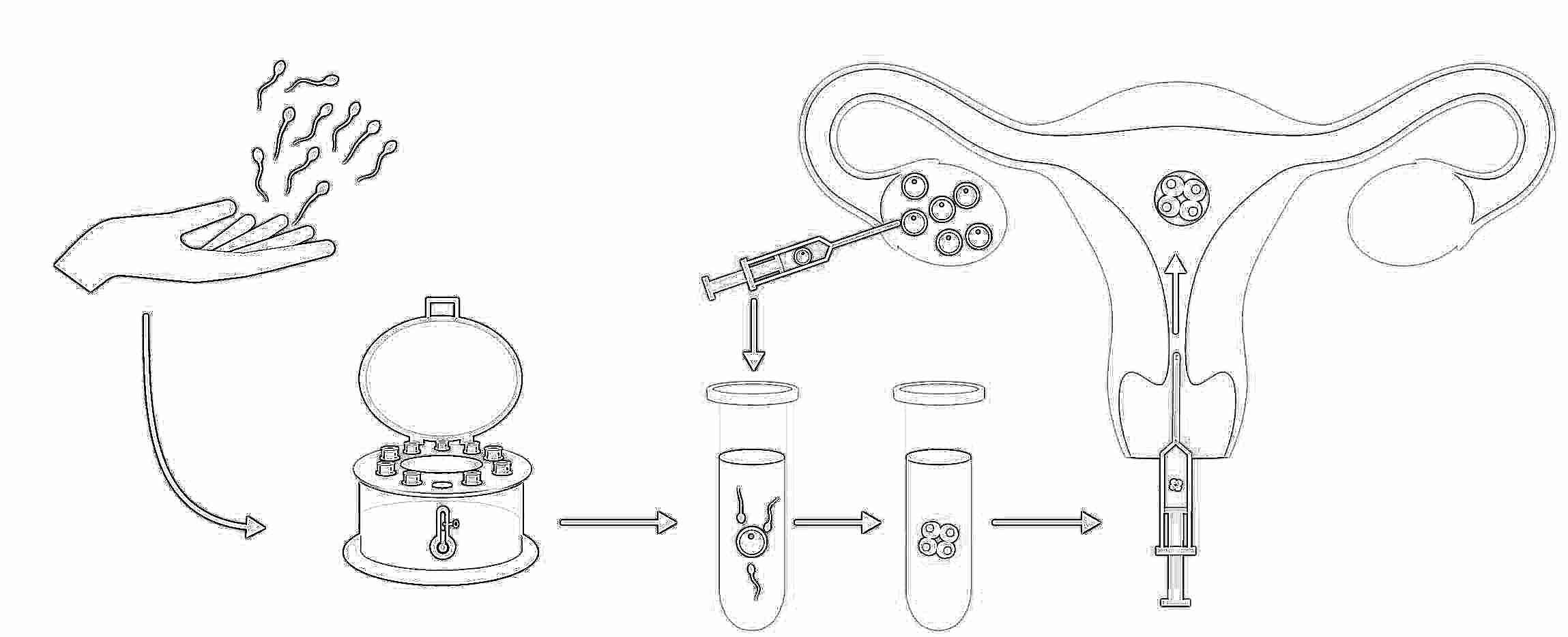 Почему сперма у мужчин разной консистенцией самое