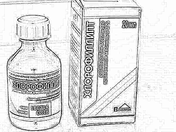 Хлорофиллипт для горла: инструкция по применению для детей