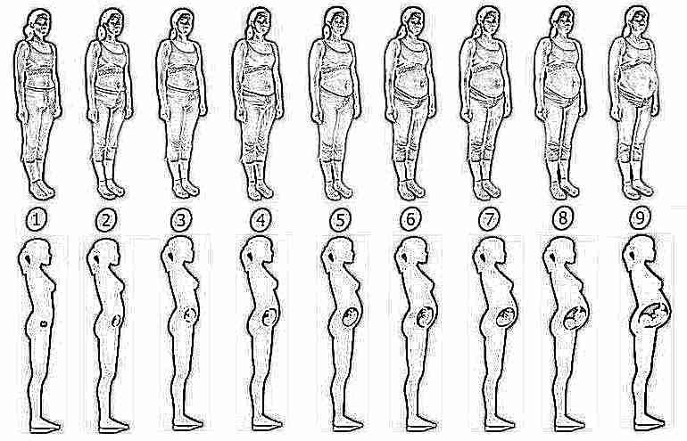 как похудеть на 8 месяце беременности