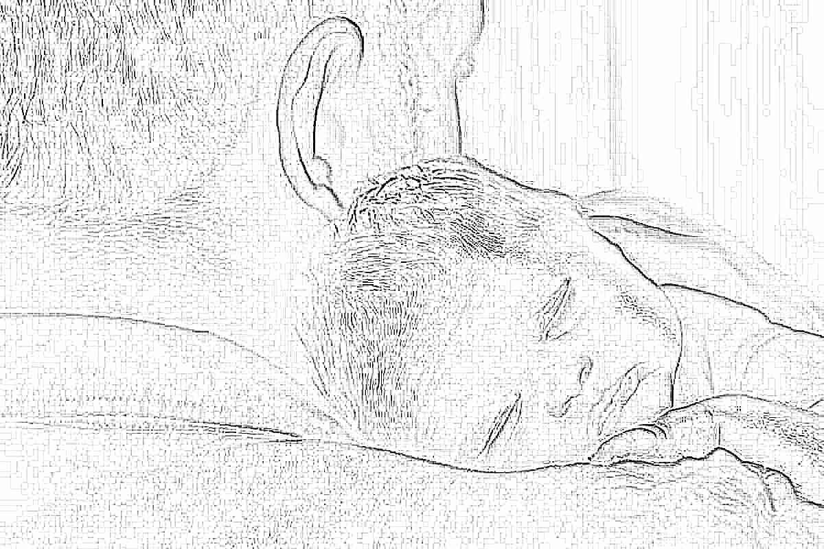 Что такое фертильность и как определить ее уровень