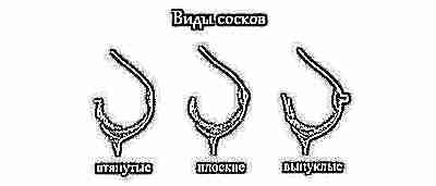 Виды соска груди