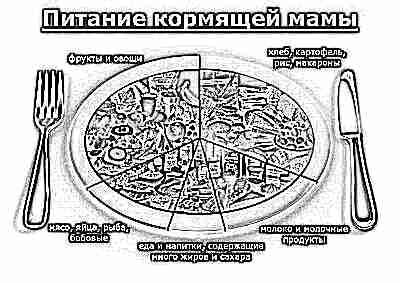 Питание кормящей мамы - структура и состав