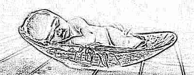Ребенок новорожденный