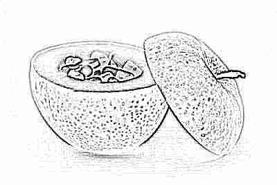 Пребиотики в фруктах