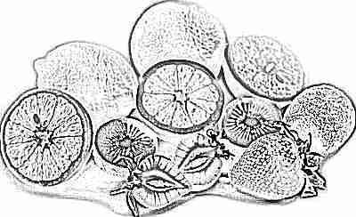 Сбалансированное питание - витамины