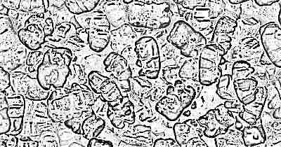 Жевательные витамины для ребенка 5 лет