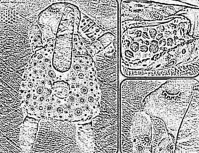 Игрушка-грелка для новорожденного с вишневыми косточками