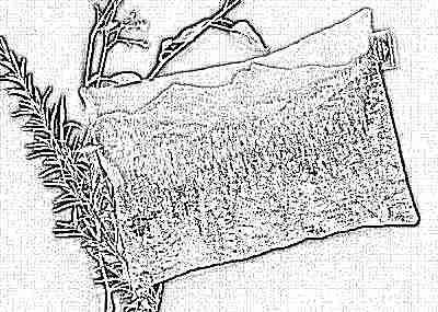 Игрушка-грелка подушка с травами для новорожденного