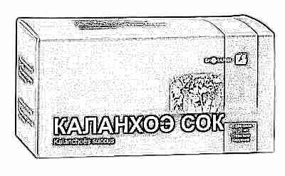 Каланхоэ от насморка для детей до года: лечебные свойства при насморке