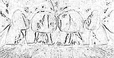 Серебрение молочных зубов или фторирование