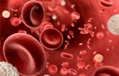 Повышенный анализ крови соэ в крови