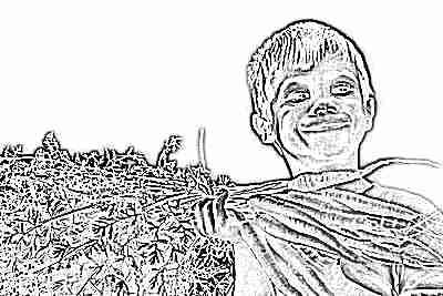 vitamin-a-dlya-detej-1.jpg