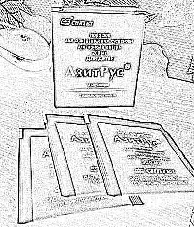 Инструкция по применению препарата Азитрус для детей и взрослых и аналоги