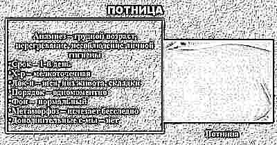 Симптомы и лечение потницы у новорожденных и грудничков