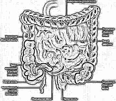 Болезнь кишечника психосоматика