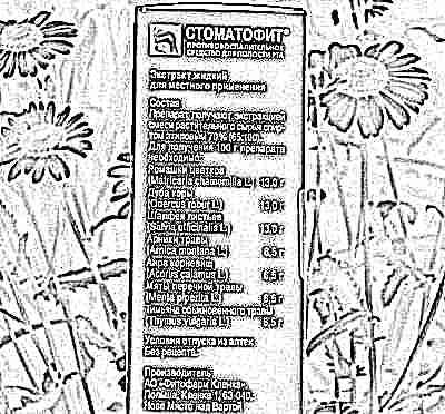 Стоматофит для десен