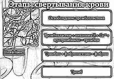 Геморрагическая болезнь новорожденных: причины, симптомы и лечение