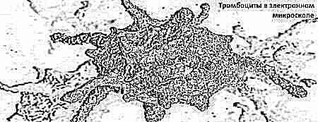 тромбоциты норма у детей по возрасту таблица