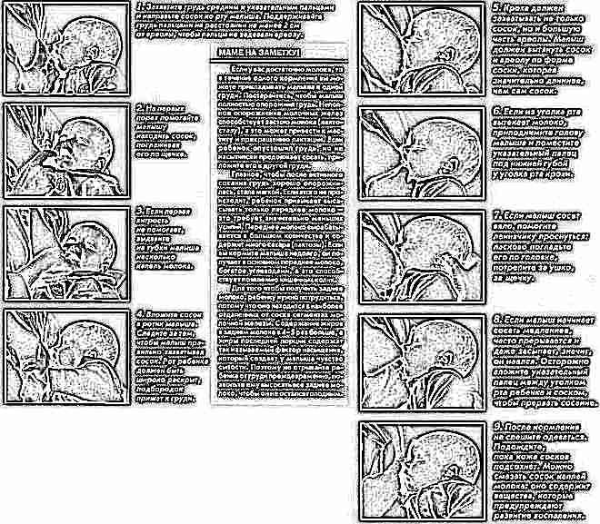 Этапы кормления грудью