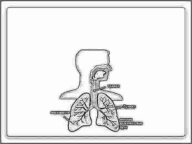 Как долго лечиться пневмония у детей