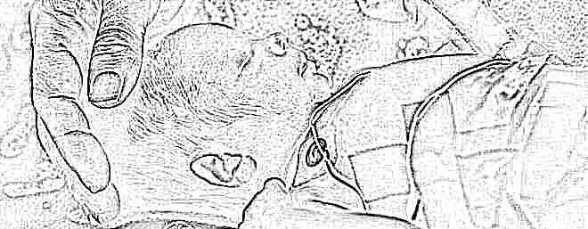 Развитие для ребенка с органическим поражением цнс