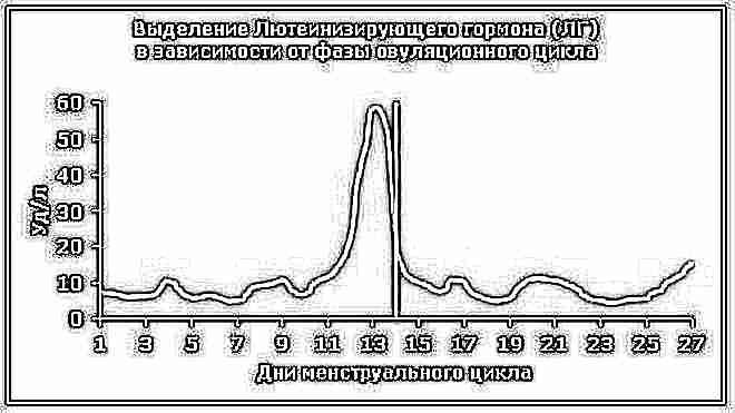 Овуляционная фаза какой день цикла 45