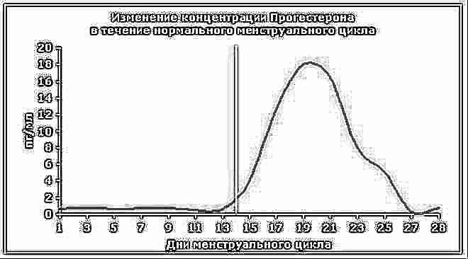 Овуляционная фаза какой день цикла 42